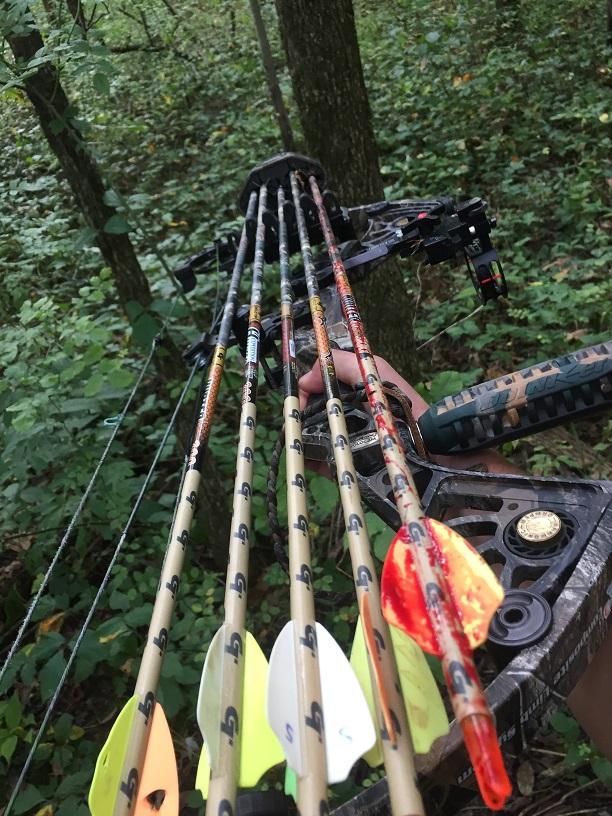 bow season 11.jpg